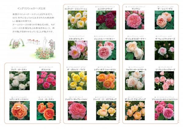 0526一般向け花ガーデンガイド中